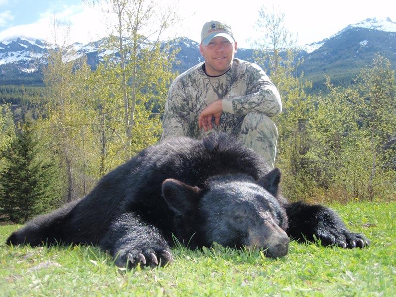 big black bear killed with bow in British Columbia
